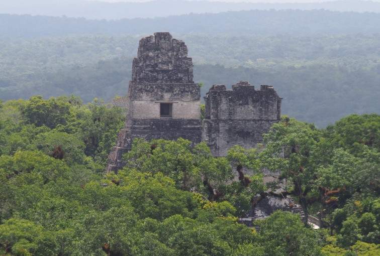 A day at Tikal.